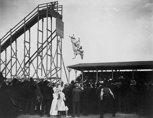 Diving Horse, photographie, début XXe
